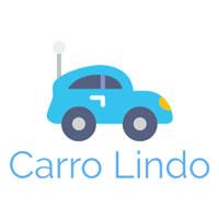 CARROLINDO-BLOG-PRNEWSWIRE
